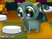 العاب مطعم القطط 2015 - لعبة مطعم القطط 2016
