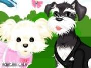 العاب تلبيس الكلب الجديدة 2011 2015 - لعبة تلبيس الكلب الجديدة 2011 2016