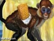 العاب تنظيف القرد 2015 - لعبة تنظيف القرد 2016