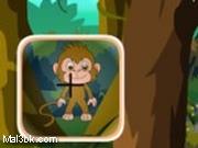 العاب البحث عن القرود 2015 - لعبة البحث عن القرود 2016